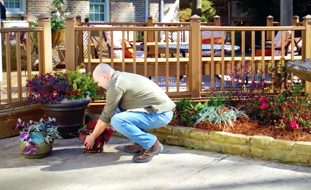 A man removes plants from his patio area.