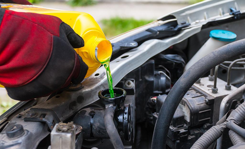 Một người thêm chất làm mát vào động cơ ô tô.