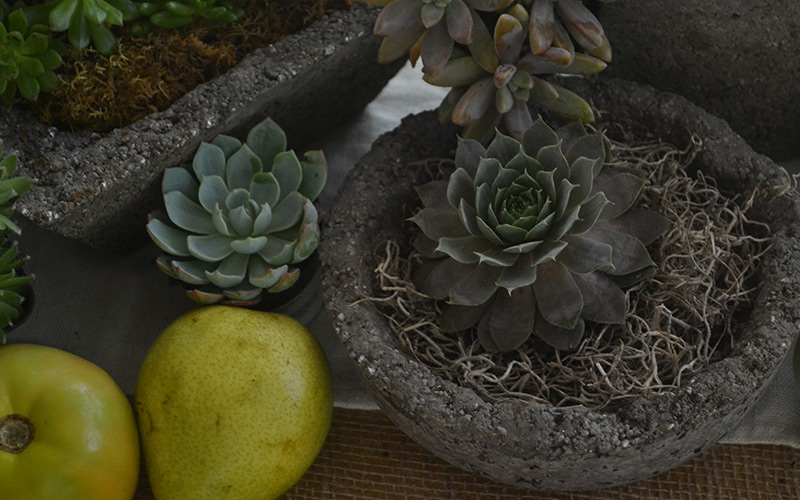 Add Fresh Produce to Your Centerpiece
