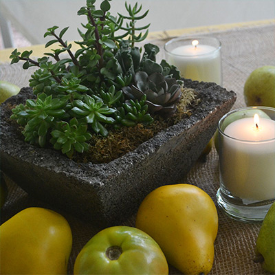 Ideas for Harvest Centerpieces With Succulents, Fruit and More