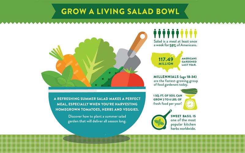 A Refreshing Summer Salad