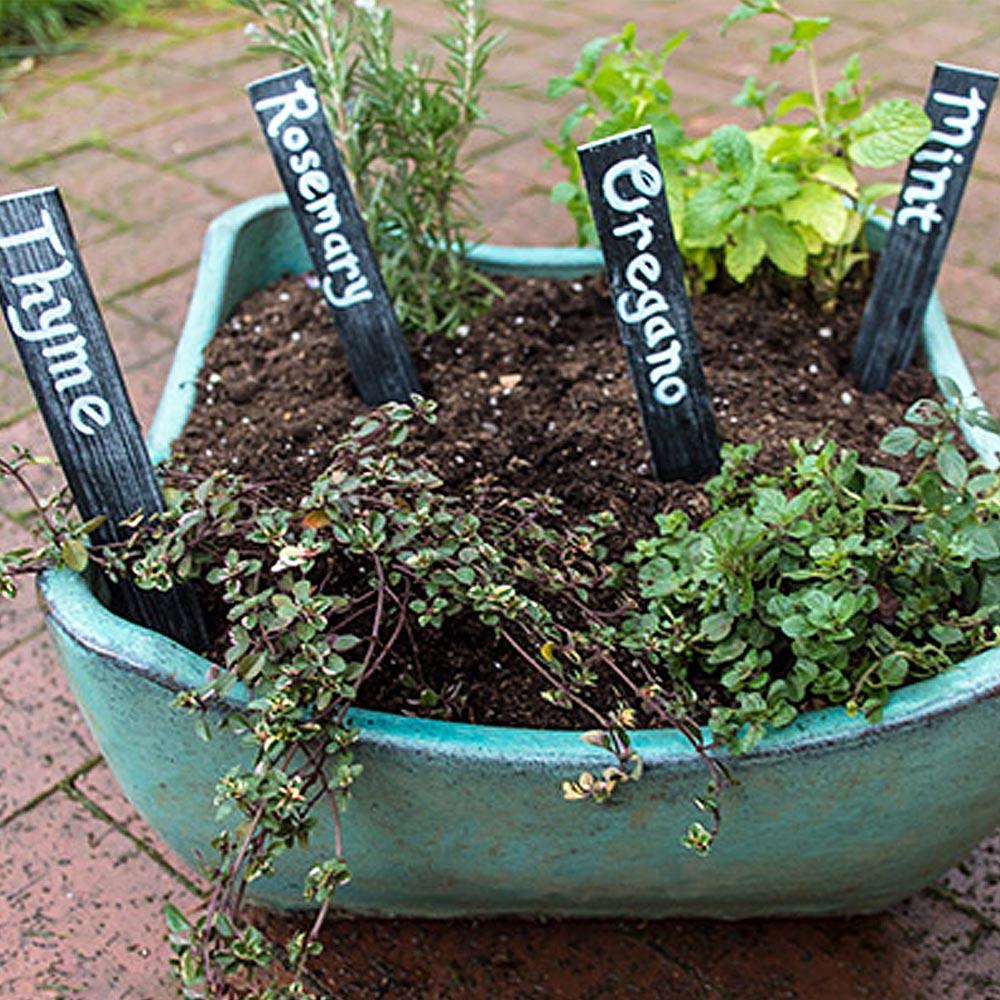 Keep Plants Neat: DIY Chalkboard Markers