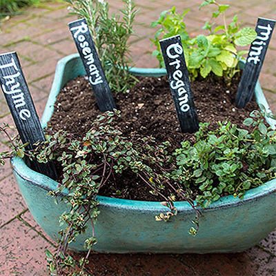 Keep Plants Neat: DIY Chalkboard Markers