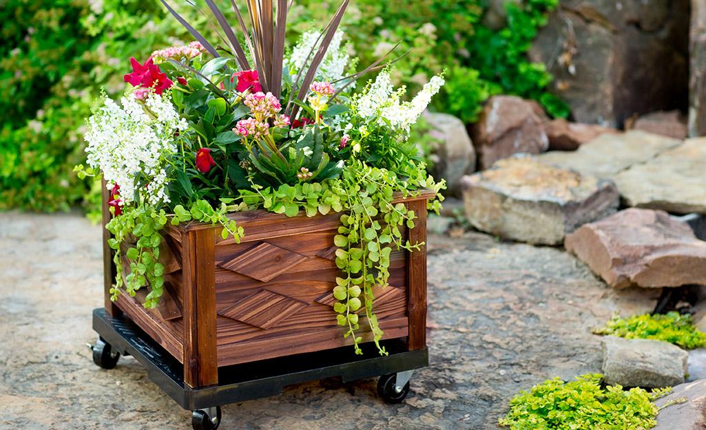 Summer flowers in a planter with wheels