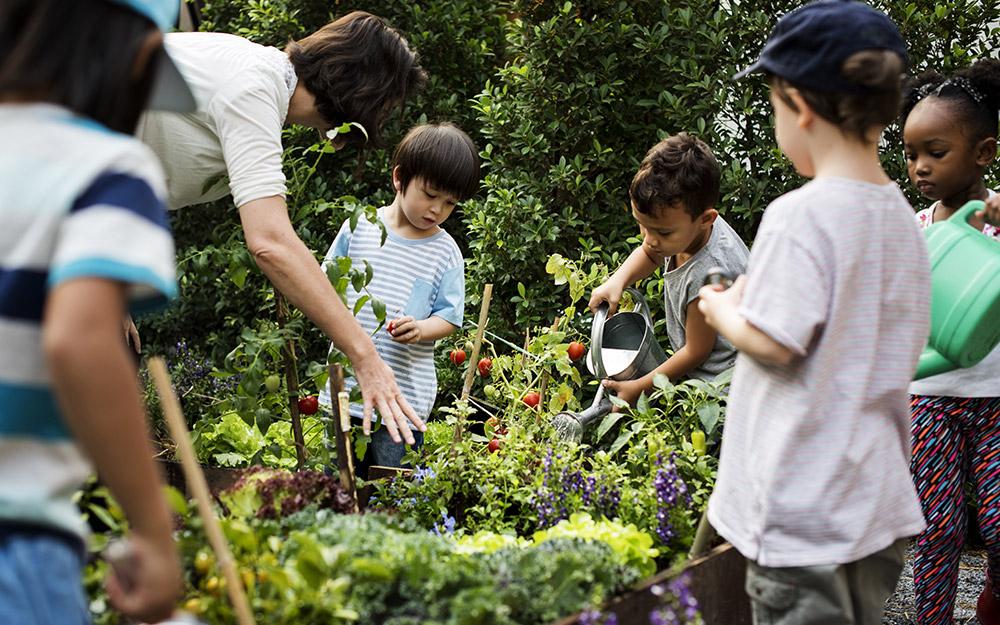Người lớn hướng dẫn trẻ em cách tưới nước và chăm sóc khu vườn
