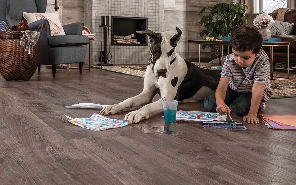 A boy and his dog playing on a laminate floor in the living room.