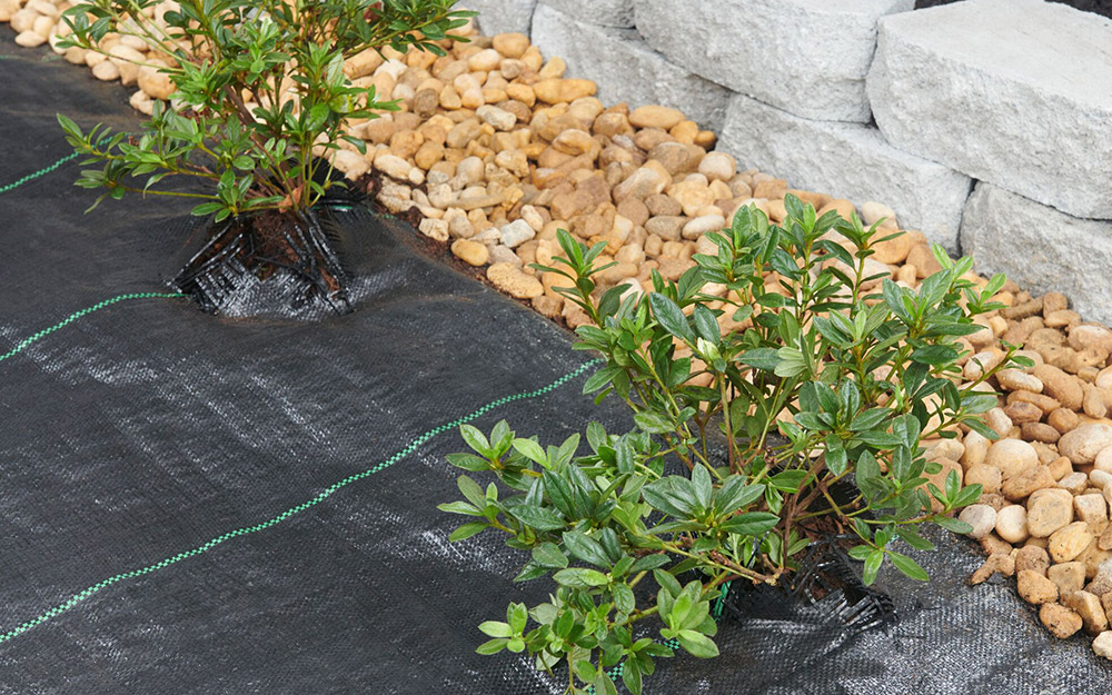 Rock Landscaping Ideas That Increase Curb Appeal The Home Depot