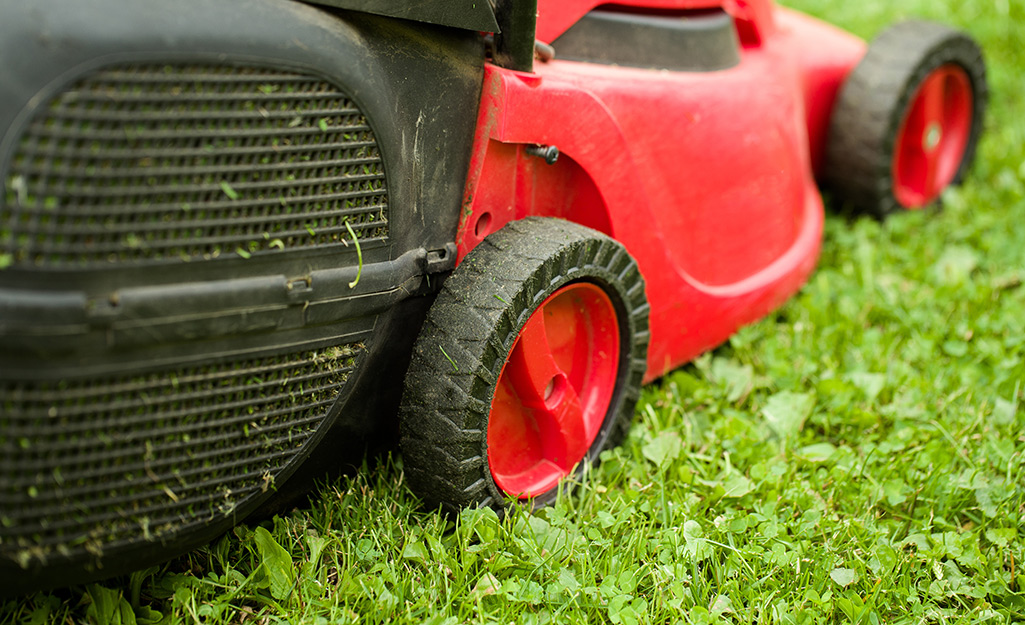 Close-up of a lawn mower from the side.