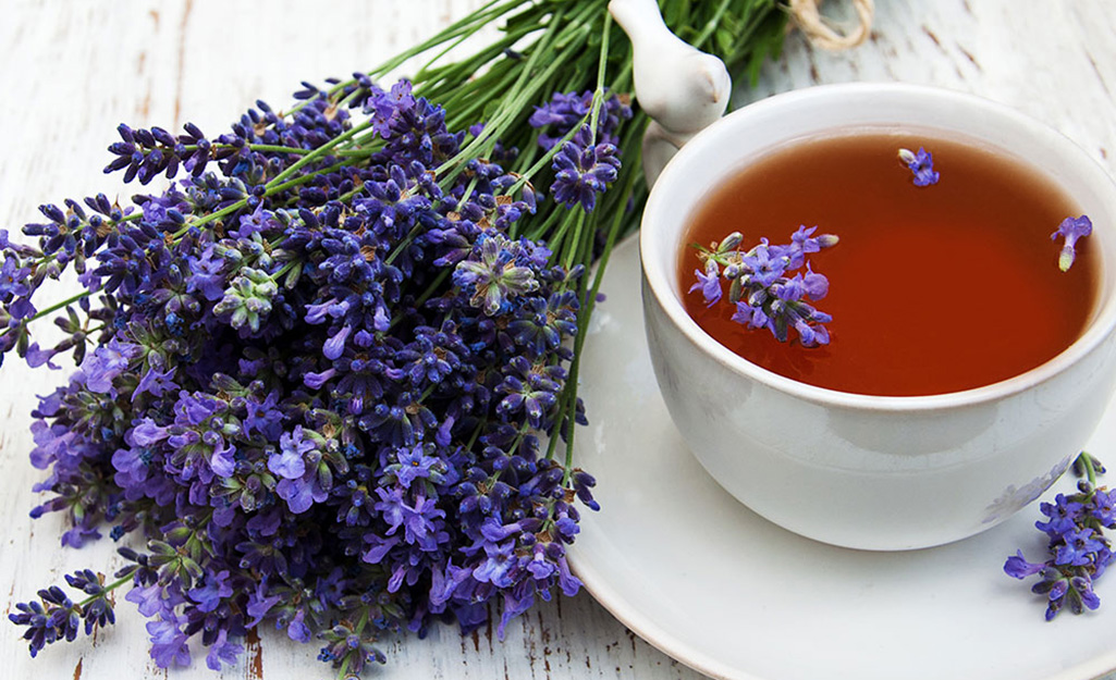 Lavender and a cup of tea