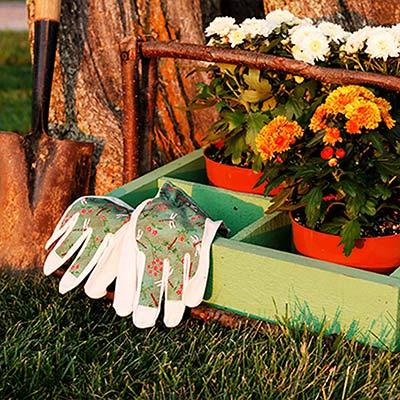 Low-Maintenance & Organics Top Trends in Gardening Survey