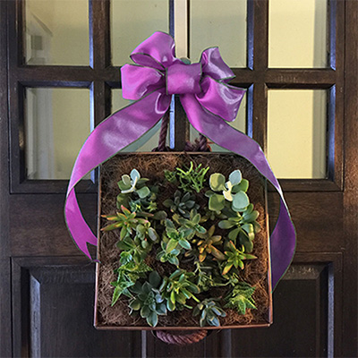 Make a Succulent Wreath for Mother's Day
