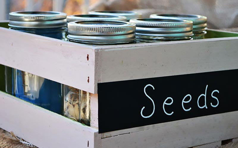Seed storage crate