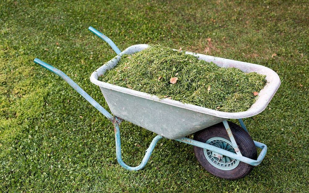 grass clippings used as mulch