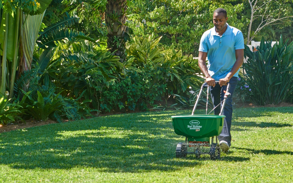 How to Kill Weeds in Your Lawn Organically - The Home Depot