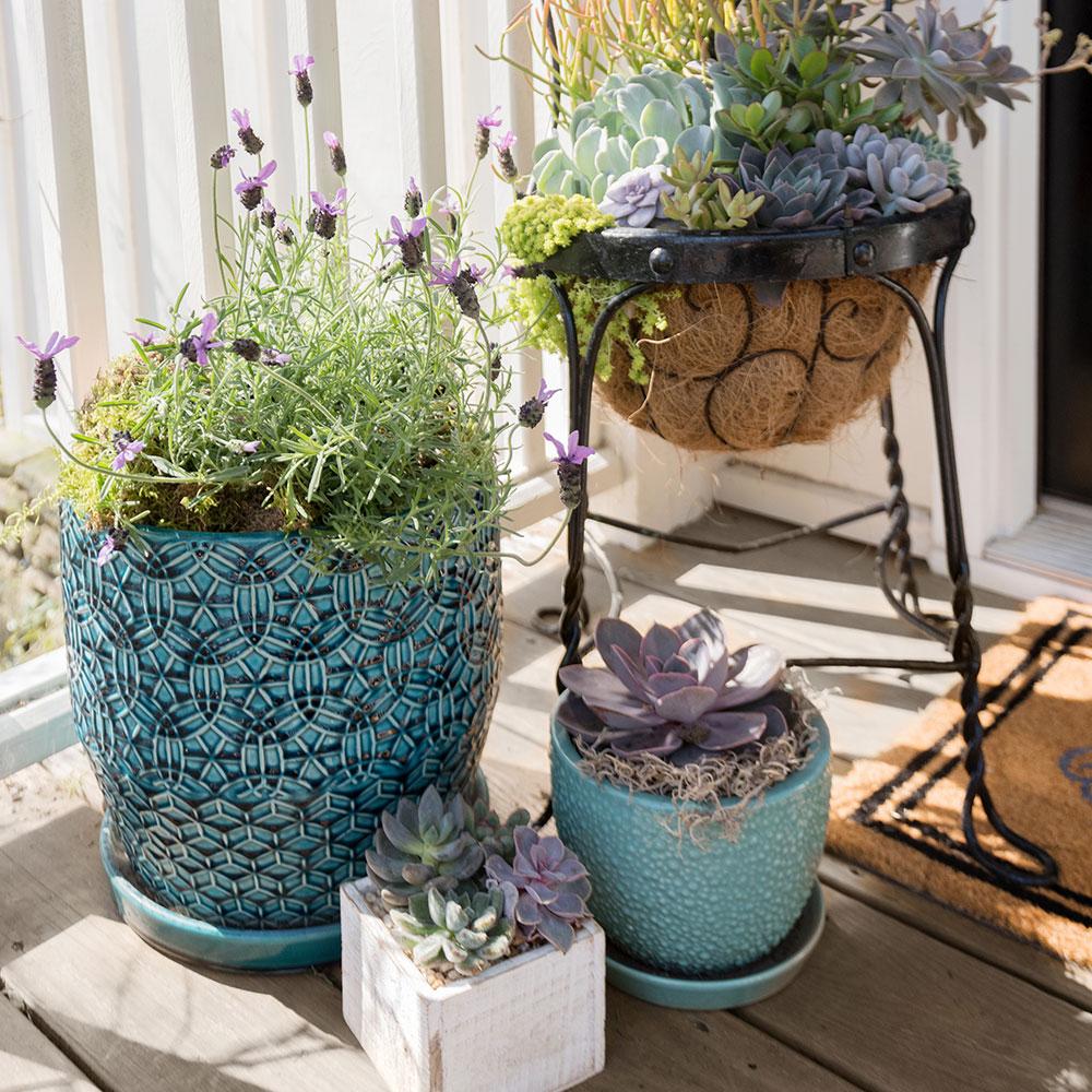 Pinterest Garden Ideas