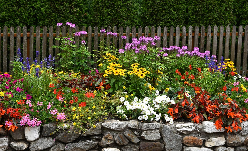 A colorful flower bed with perennials and annuals.
