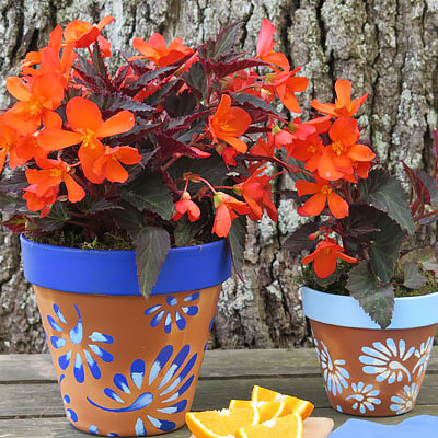 Planting Terra Cotta Pots for a Summer Party
