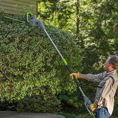 A man uses a pole saw to prune shrubs.