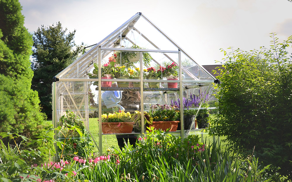 A greenhouse made from clear polycarbonate panels surrounded by a garden.