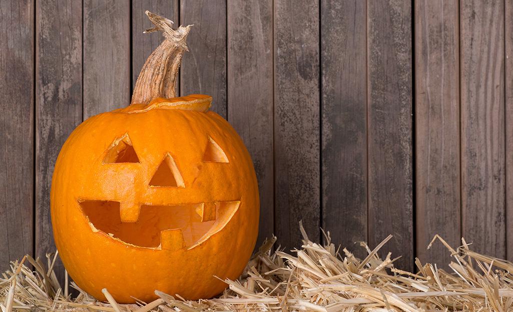 A carved pumpkin.