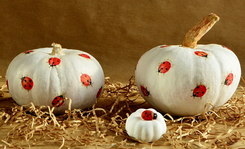 Pumpkins with lady bugs painted on them.