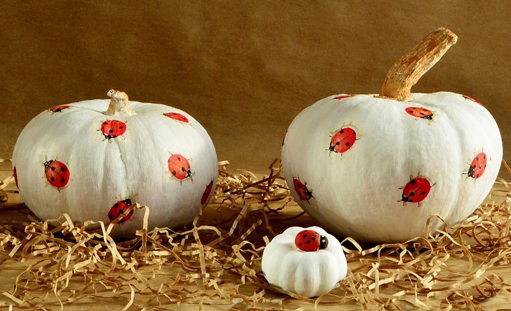 Pumpkin Decorating Ideas - The Home Depot