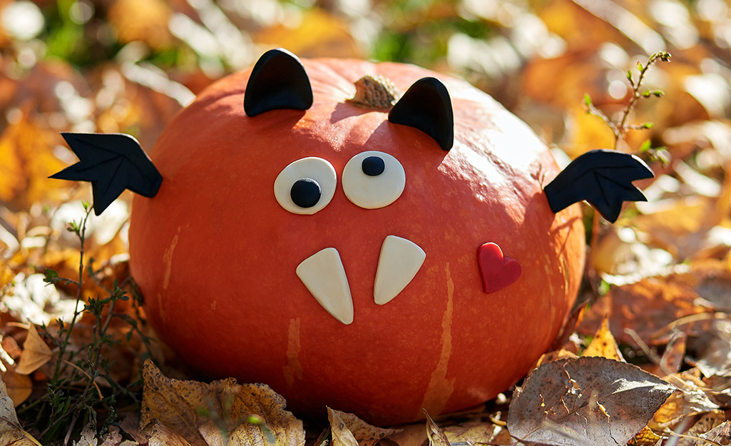 Pumpkin with a silly face.