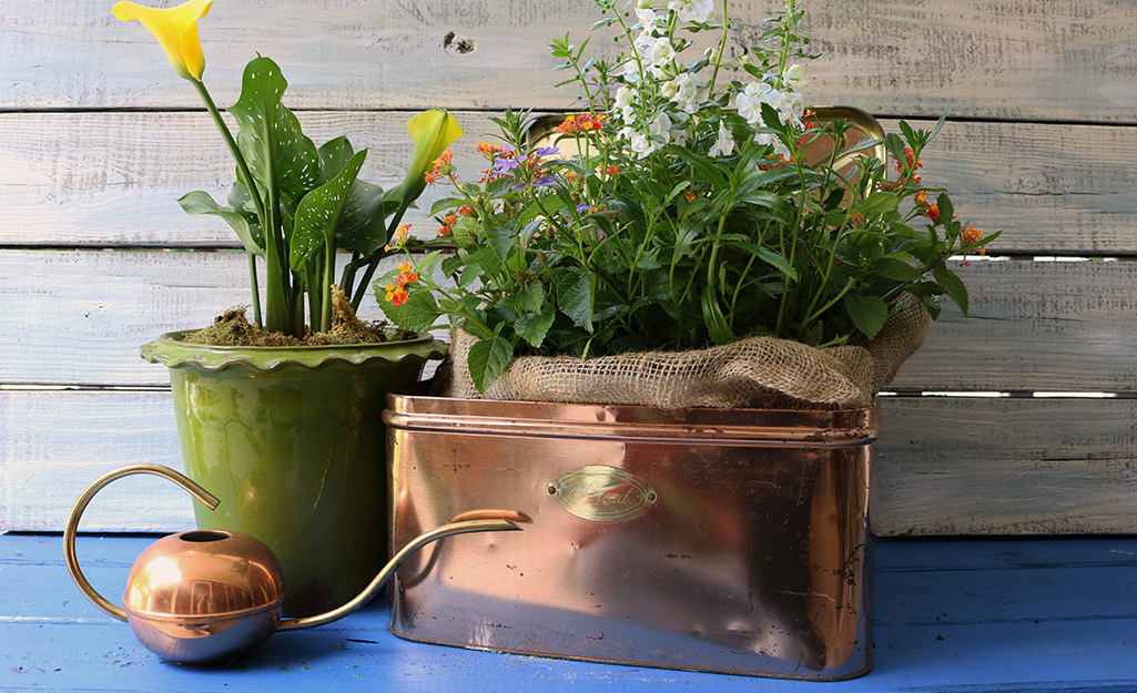 Copper bread box filled with plants