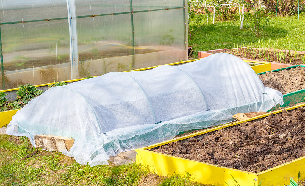 Row cover on a raised bed