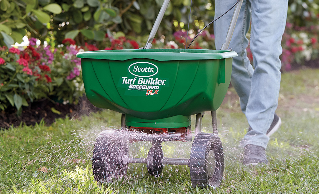 Spreader with grass seed