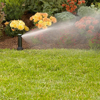 Sprinkler Smarts for Summer