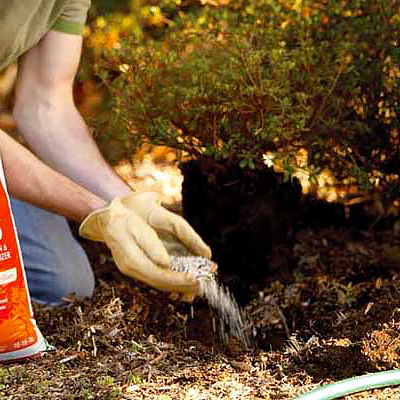 Test Your Soil for Spring