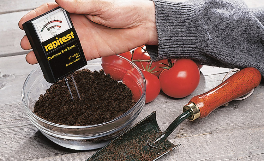 Someone using a soil meter to test a handful of soil in a small bowl.