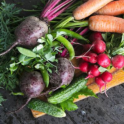 Tips to Plan and Prep a Fall Vegetable Garden