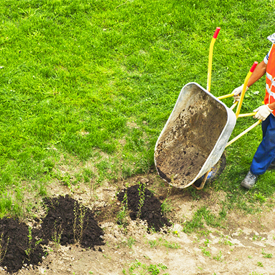 Healthy Lawns Start With a Thin Layer of Top Dressing