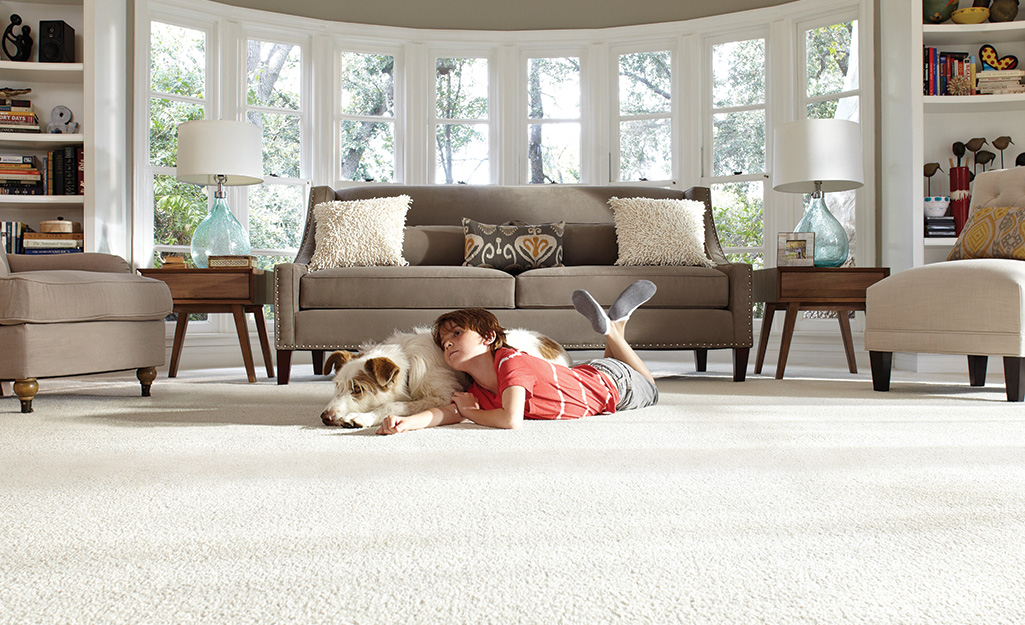A child and a dog lie on a white living room carpeted floor.