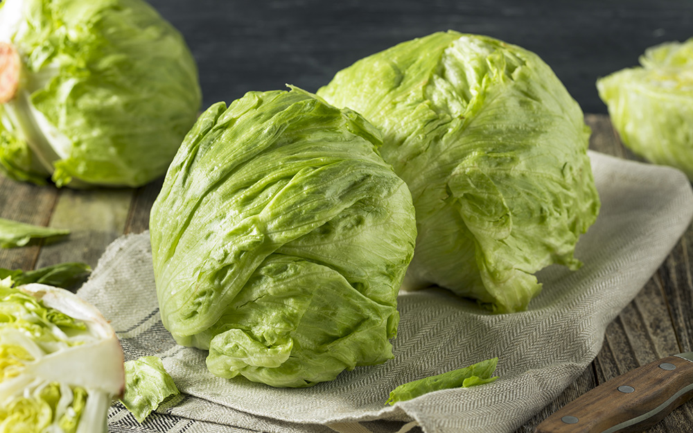 Types Of Lettuce The Home Depot