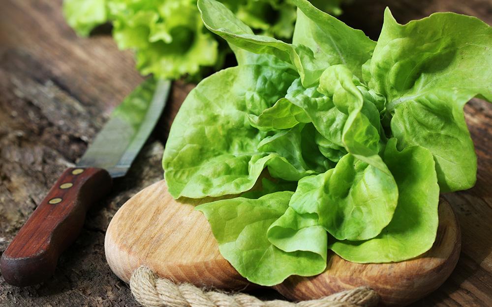 A head of butterhead lettuce on a wood cutting board.