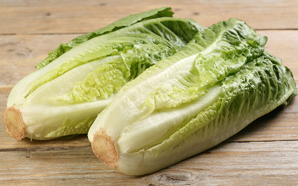 Two heads of romaine lettuce laying on a wood table.