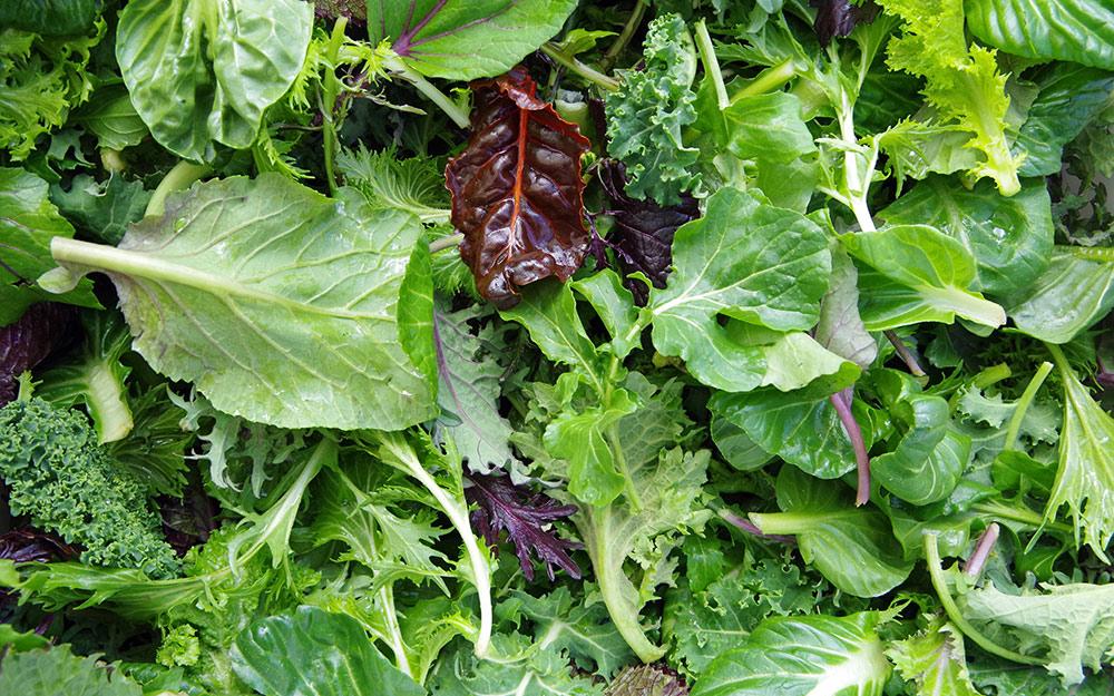 A mix of salad greens up close.
