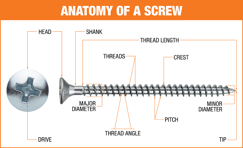 Types Of Screws The Home Depot