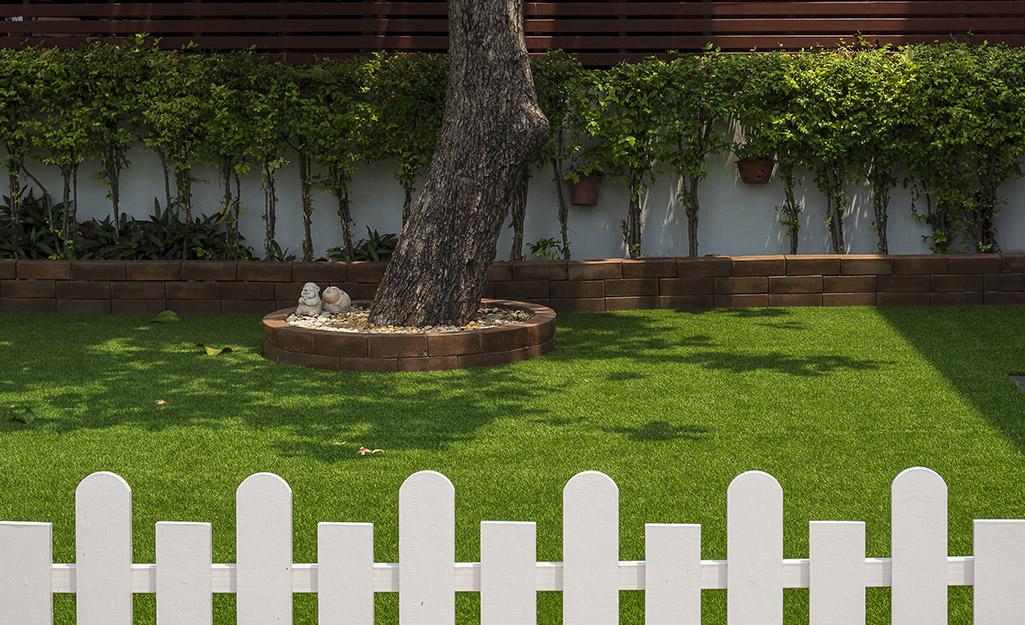 A sunny and green backyard has dappled shade under a large tree.