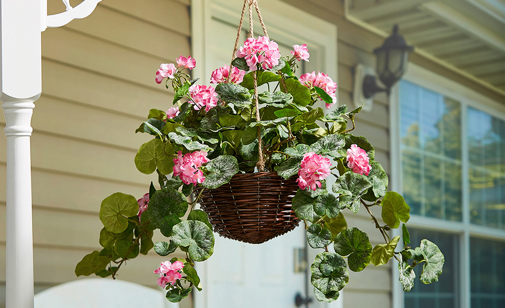 A hanging basket of pink geraniums on a porch.