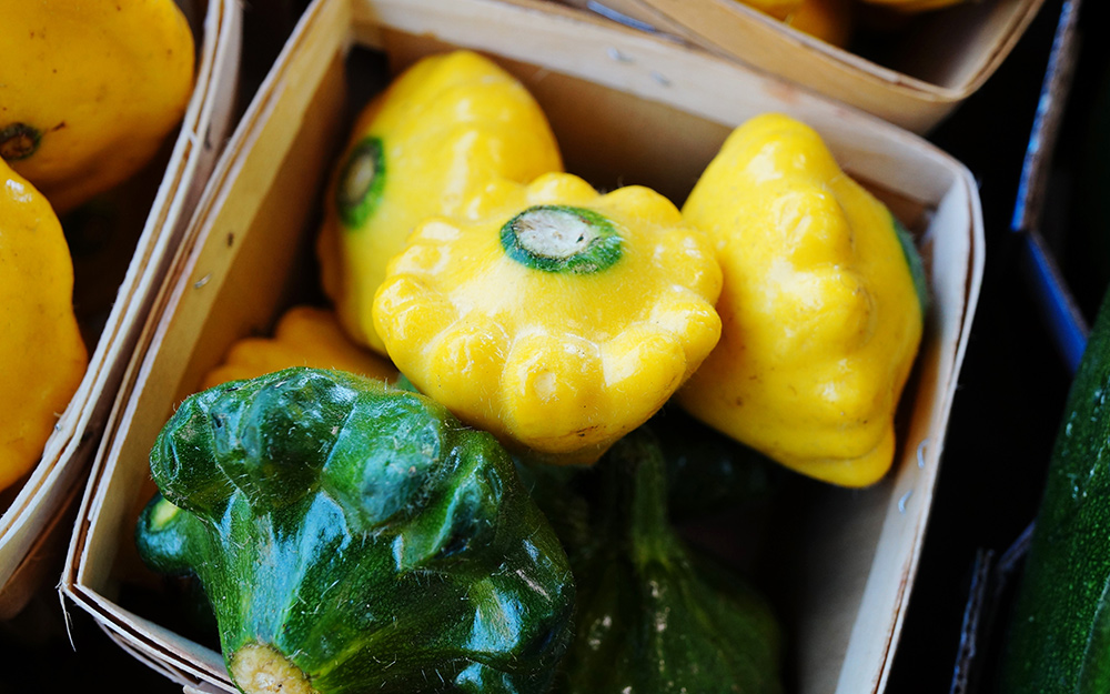 Green and yellow pattypan squash in a basket.