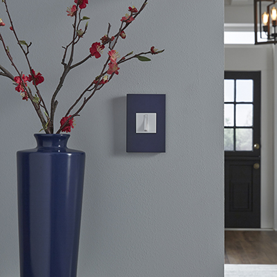 A light switch with a blue wall plate next to a matching blue vase.