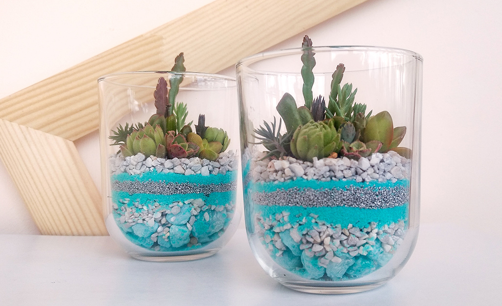 Vases filled with blue and white pebbles topped with succulents.