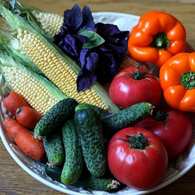 Fresh garden vegetables in a bowl