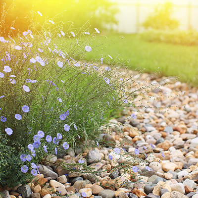 A dry creek bed in a backyard.