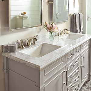 Shop Bathroom Vanities Vanity Cabinets At The Home Depot - Counter top bathroom sinks
