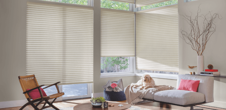 Free Alternatives To Window Blinds Desainrumahkerencom